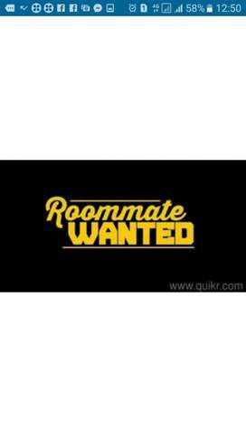 Roommate wanted @ Pattom