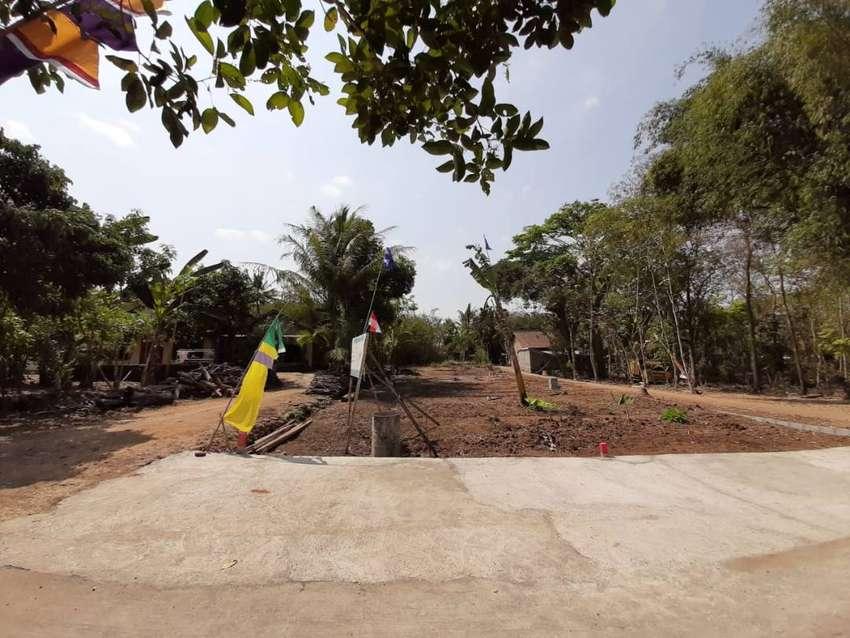 Tanah Murah Dekat Jalan Wates Tahun Depan Harga Naik 0