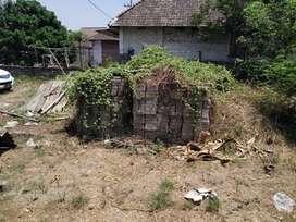 Miliki Tanah Kavling Zona Berkembang Taman Sarirogo