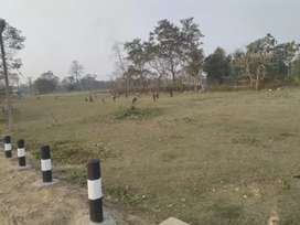 Mangaldai chapai near army camp
