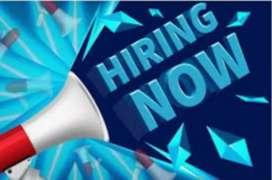 Jobs jobs jobs jobs jobs