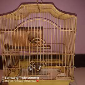 Bird Cage with egg box