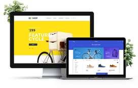 Website Designing company in Delhi, Rizvi Web Design Development Delhi