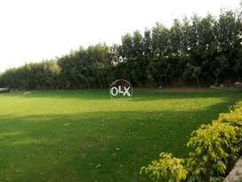 1 kanal Farmhouse Land is avaible in Heir at Bedian road Lahore