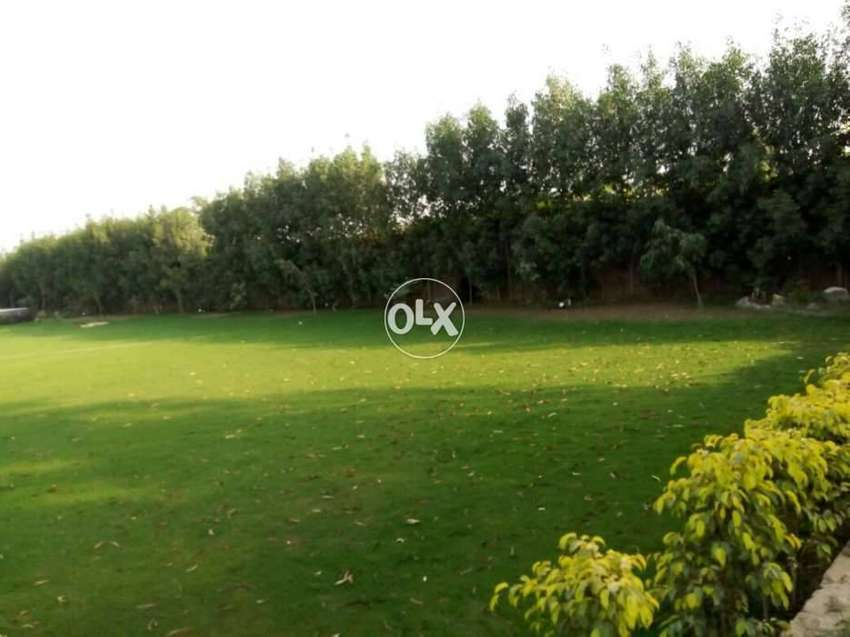 1 kanal Farmhouse Land is avaible in Heir at Bedian road Lahore 0