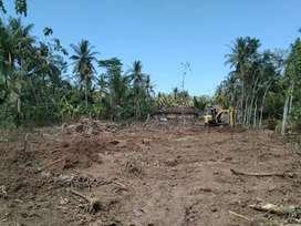Tanah Kavlingan murah di Kulonprogo