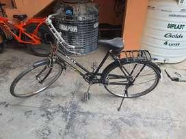 Atlas Goldline bicycle