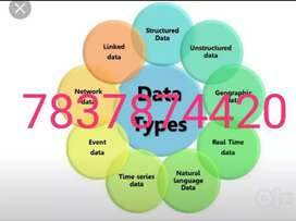 Data Entry cum Tally Operator  Jobs