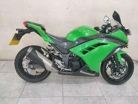 Ninja 250 CC Parian warna