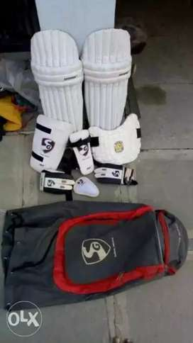 SG Cricket kit for sale with bag