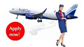 Full time job in Indigo Airlines On roll vacancy fresher