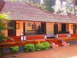 Land in jaraikela with house,railway station side land 30 dismil