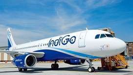 Airline Industry Job / Ground Staff / High salary *Freshers Apply