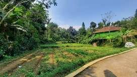 Tanah Subur Ada Sumber Air di Pedesaan Bojong Purwakarta Dijual Murah