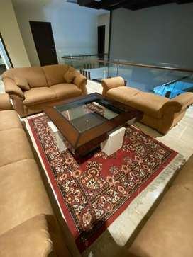 Sofa 9 seater with centre table and carpet