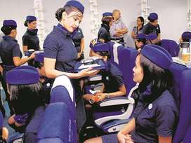 INDIGO Job Indigo Job Indigo Job  INDIGO Job INDIGO AIRLINES Job Vacan