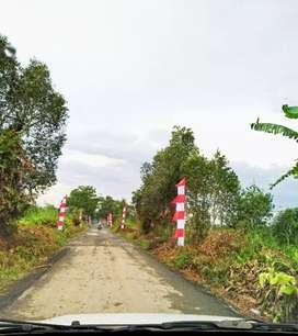 Tanah Luas 2 hektar murah di jejangkit batola
