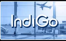 Full of Vacancies in Indigo Airlines for male or female