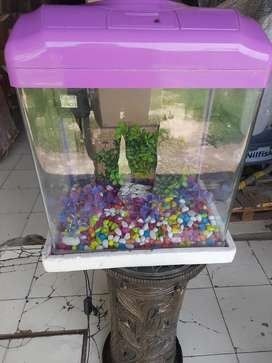 Fish aquarium like new