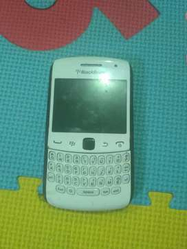 blackberry appolo