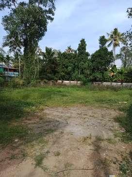 8 cent orginal land at paravur thoniyakav near athani