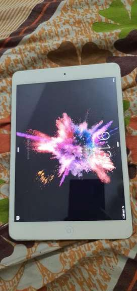 ipad mini silver color gud battery backup perfect condition with chagr
