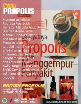 British Propolis Premium Inggris