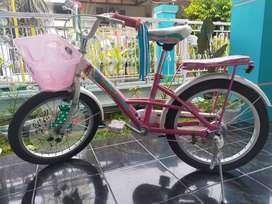 Sepeda anak cewek wimcycle
