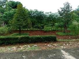 Tanah Plus Pohon Durian di Ngadirejo Mojogedang Karanganyar 1737m²