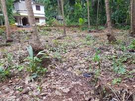 20 cent residential plot