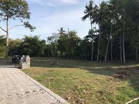 Tanah Kavling Selatan Kampus UMY: Cocok Bangun Kost dan Investasi