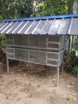 Hen cage for sale