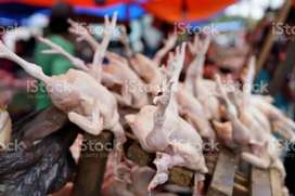 Chicken at whole sale rate home delivery and restaurant supply