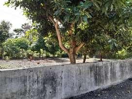 Tanah pekarangan dijual dekat candi Sambisari