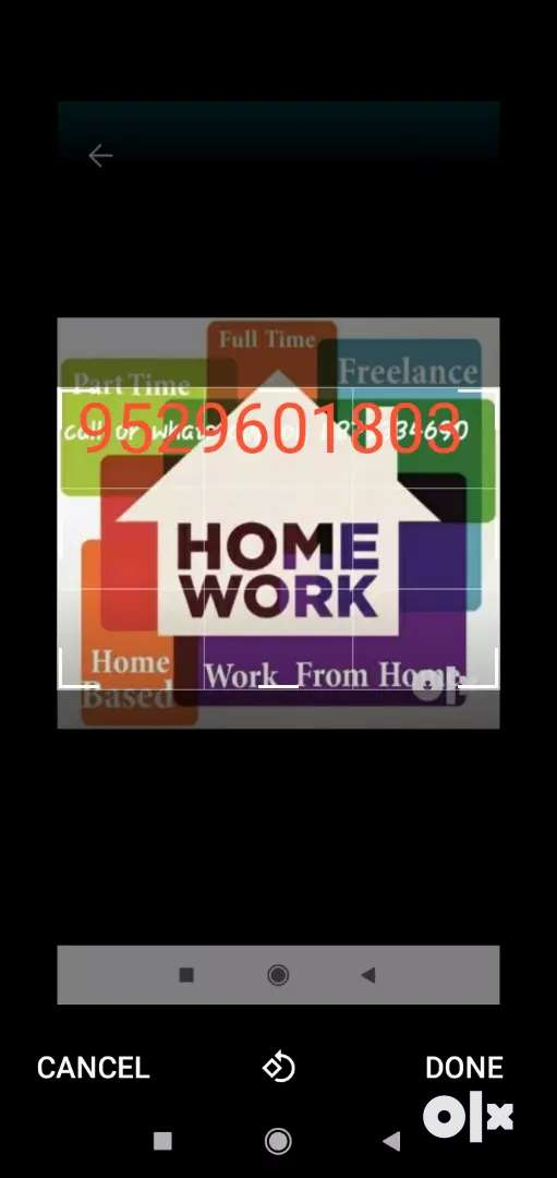 Work from home no boss no time limit 0
