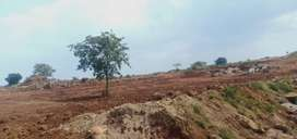 20 Acre Agriculture Farm Land near Thally To jawalagiri
