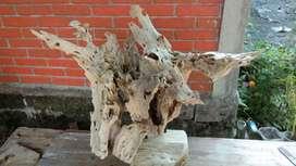 Hiasan akar jati tua erosi alami unik dan langka
