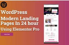create modern wordpress landing page in 24 hour