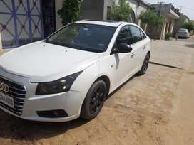 cruze white colour with NOC