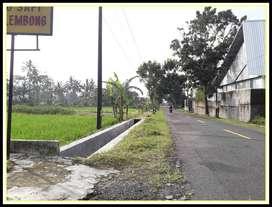 Jual Tanah Sleman 3 Juta-an SHM P