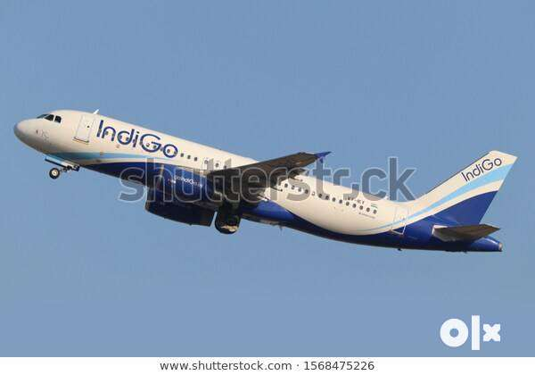 Make your career in Indigo Airlines Jobs in so many Departments  Salar 0