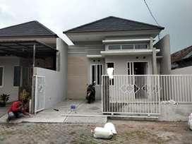 Dikontrakkan rumah di Jotangan Mojosari Mojokerto