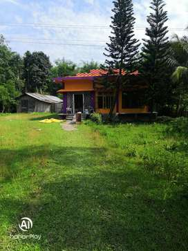 House with 2.5 bigha lend for sale