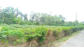 Dijual dua bidang tanah bersebelahan di Jalan Bersama Kodya Binjai