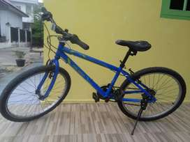 "Sepeda MTB Polygon ukuran 24"""