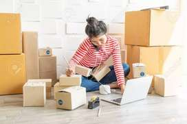 Tim/Karyawan Toko Online Bagian Packing dan Admin