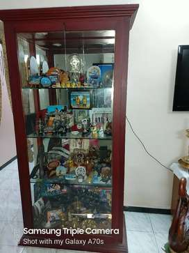 Show case for display of curios