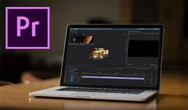 PROFESSIONAL VIDEO AND PHOTO EDITOR