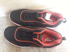Speed company shoes