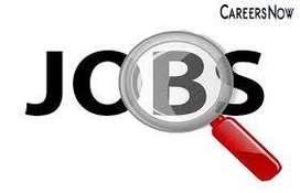 Urgent Hiring Data Entry / SEO / Back Office